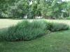 good-shepherd-landscaping4